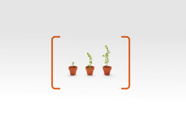 ING Growth
